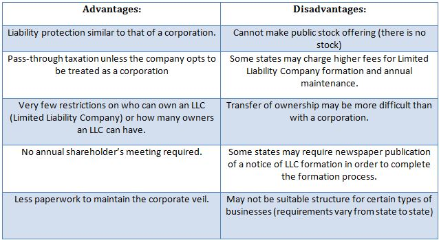 LLC (Limited Liability Company) Chart - Advantages & Disadvantages